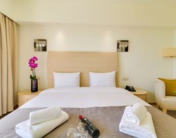 Bomo Olympus Grand Resort: Double Room/Family Room