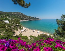 Bomo Tosca Beach: Sea View