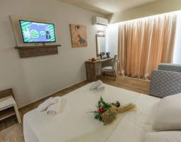 Bomo Rethymno Beach: Double Room