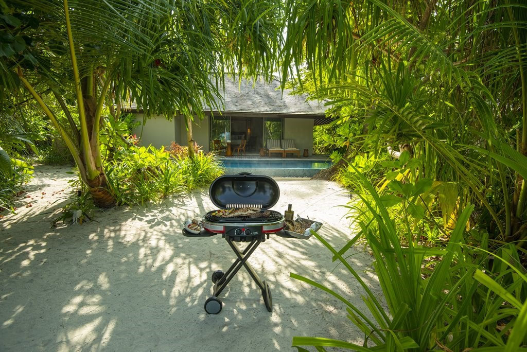 The Residence Maldives at Dhigurah  - 66