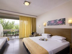 Aeolis Thassos Palace Hotel: Standard Room - photo 39